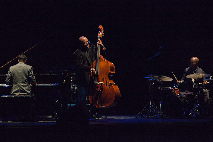 Chris McBride Trio